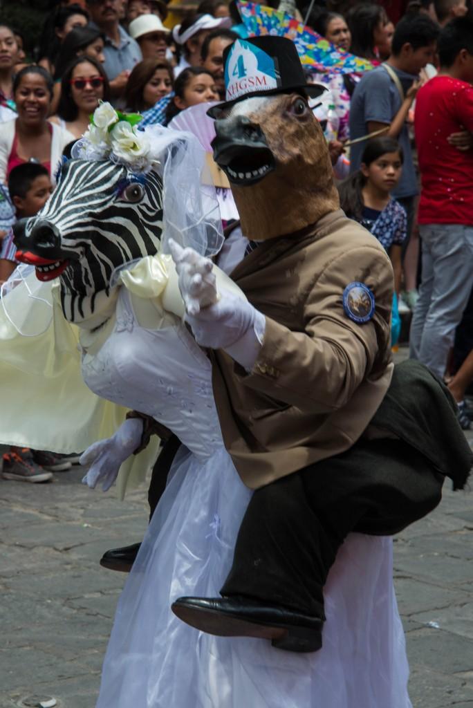 これが一番爆笑した仮装。普段の会話も、冗談や音楽が飛び交う:)