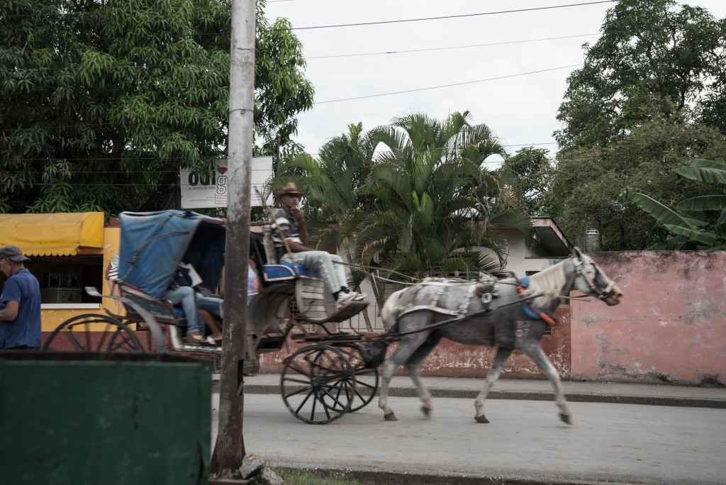 馬車がバスと同じくらい活躍してる。