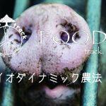 バイオダイナミック農法 vol.1|Demeter認証とは?【ドイツWWOOF日記】