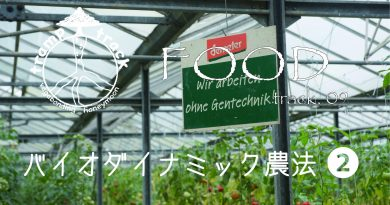 バイオダイナミック農法 vol.2|理想と現実のはざまで踏ん張る人【ドイツWWOOF日記】